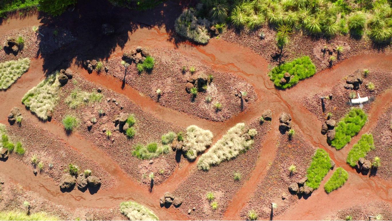 Survol en drone d'une cigogne en vol au dessus d'un paysage d'amérique du sud